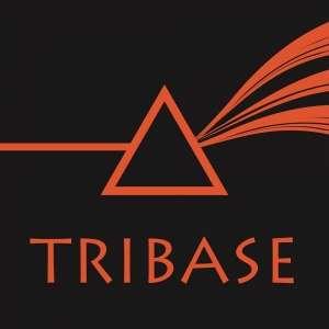 TRIBASE 【トライベース】のアルバイト情報