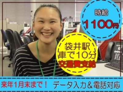 バーチャレクス・コンサルティング株式会社 袋井04のアルバイト情報