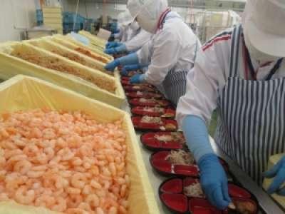 カネ美食品株式会社 新潟工場のアルバイト情報