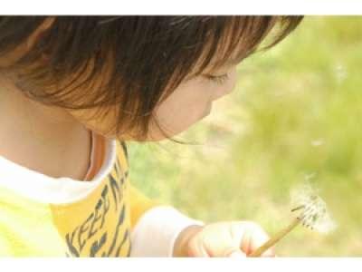 ハッピーハート児童発達支援のアルバイト情報