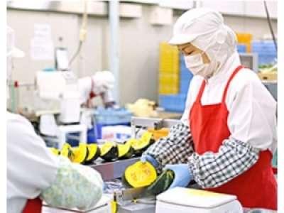 株式会社オーシャンシステム ヨシケイ新潟 三条工場のアルバイト情報