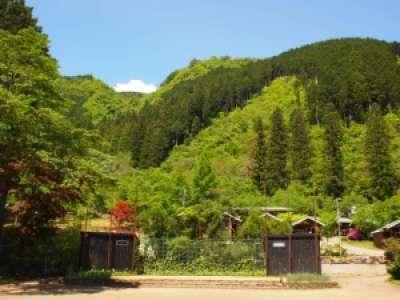 有限会社郡上八幡自然園のアルバイト情報
