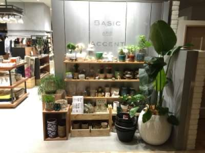 BASIC & ACCENT広島パルコ店のアルバイト情報
