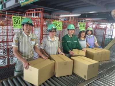 ヤマト運輸新潟ベースのアルバイト情報
