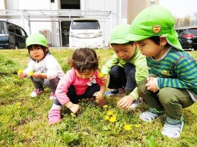 さくらんぼ保育所(三重県伊勢市)の求人画像